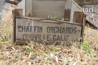 Chaffin Family Orchards 270