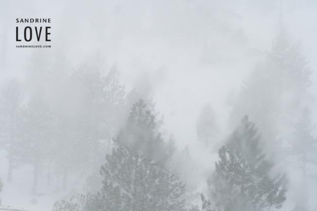Tahoe 2007 114